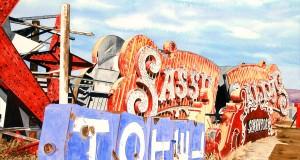 Sassy Sallys Bonyard